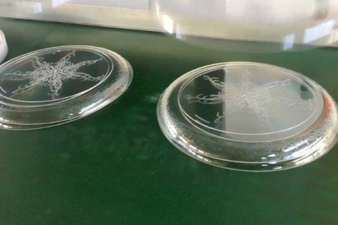 Disposable Plates Produced by ChenHsong SPEED258 Injection Molding Machine